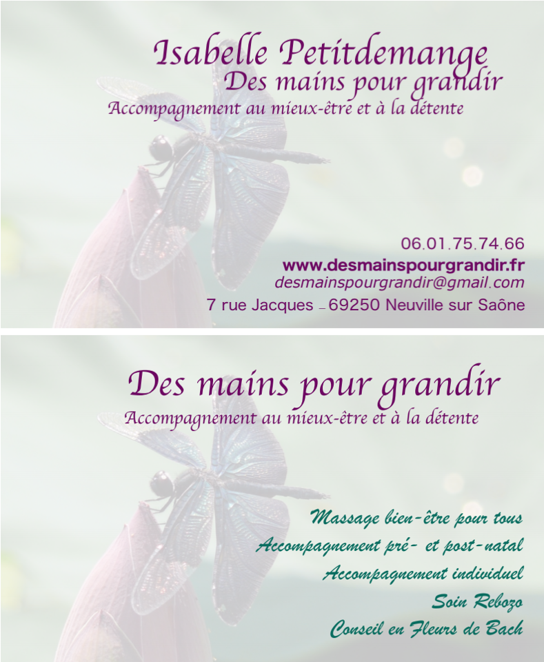 Isabelle petitdemange carte visite