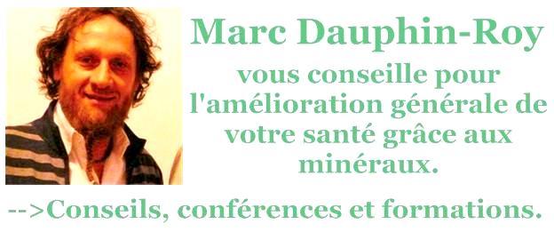 Dauphin-Roy Marc carte de visite